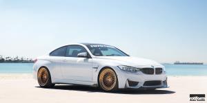 IND-T on BMW M4
