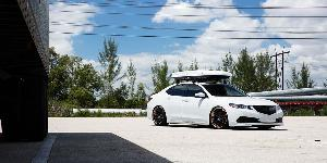 QLB on Acura TLX