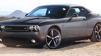 Bandit - U304 on Dodge Challenger R/T