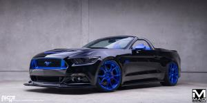 Ascari on Ford Mustang
