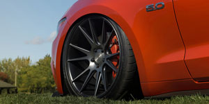 Niche Vicenza | ACI Dynamix | Mustang 5.0